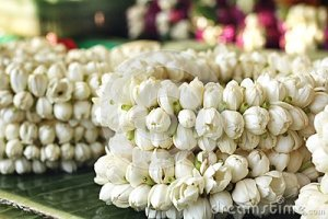 white-jasmine-garland-red-rose-35080119