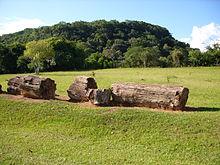 220px-Parque_paleobotânico_de_Mata.
