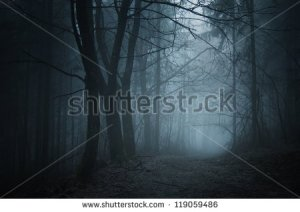 stock-photo-spooky-forest-with-path-119059486