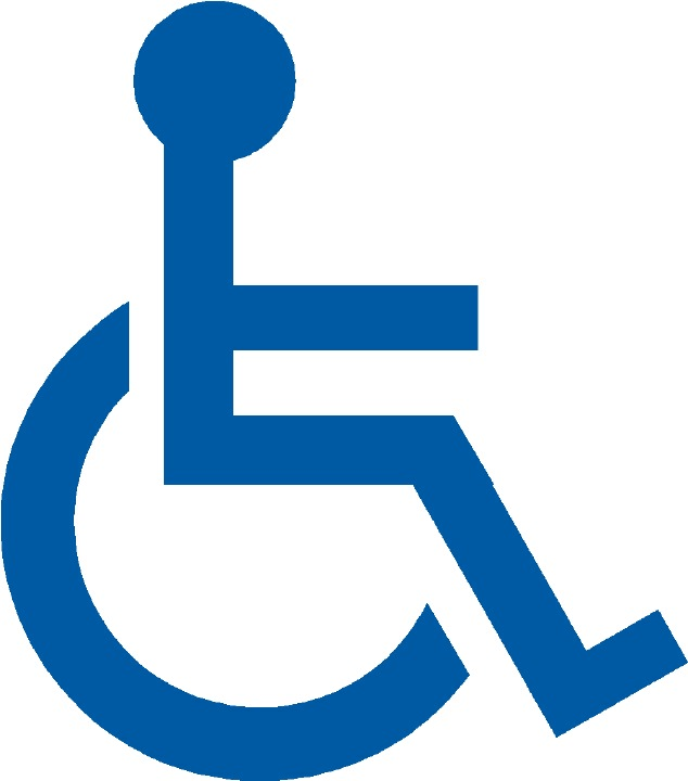 Image result for handicapped images